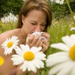 Witryna internetowa o alergiach – tekst dla alergików